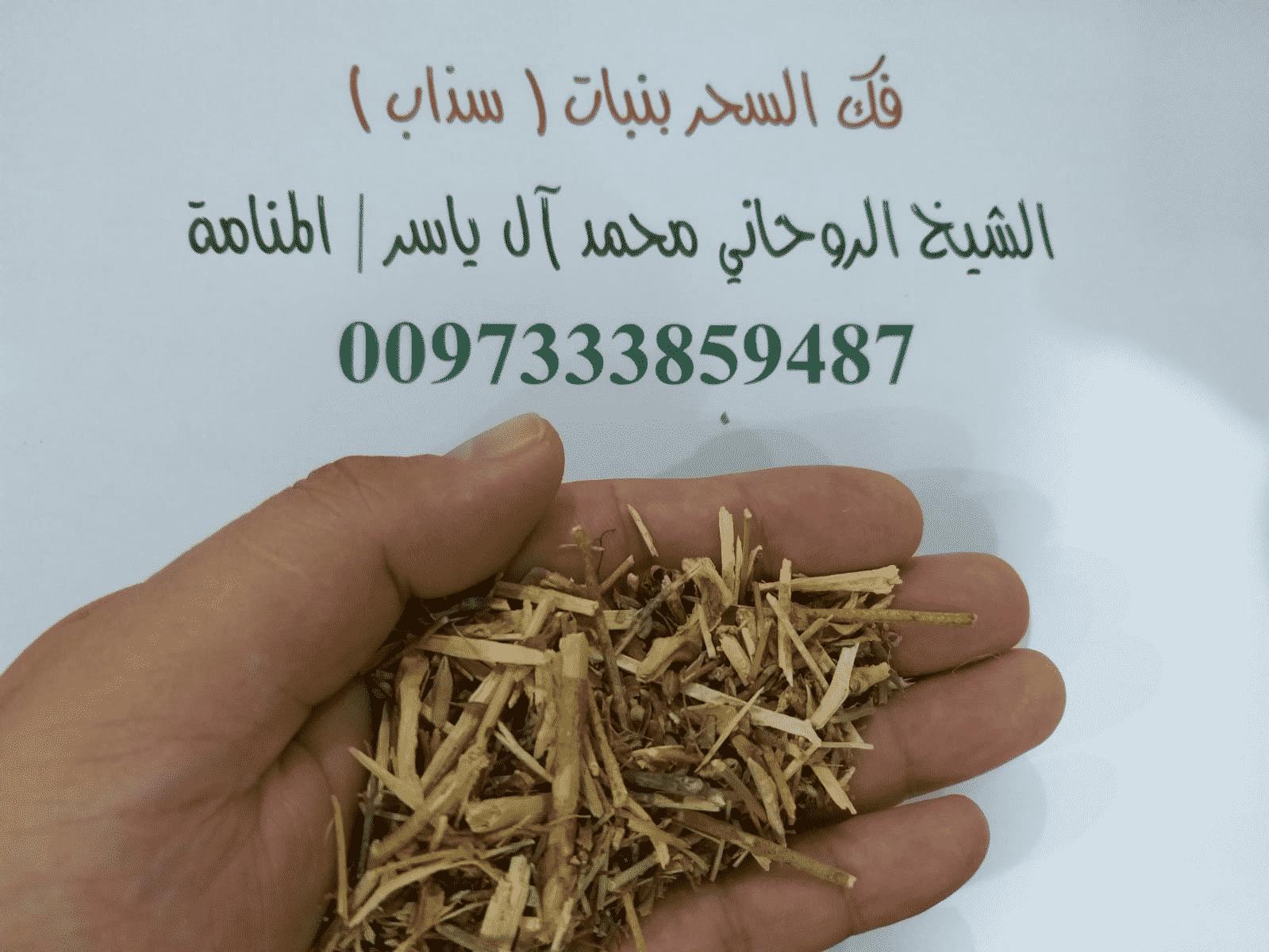 فك السحر بنبات (سذاب) الشيخ الروحاني محمدآل ياسر0097333859487